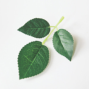 장미잎 조화